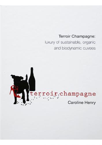 Terroir Champagne